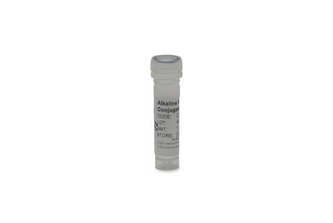 ProZyme/Alkaline Phosphatase Conjugate Stabilizer [CJ90]/CJ90/500ml
