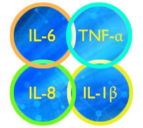salimetrics/Cytokine Panel/salivary-cytokine-panel/25 μL